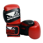 BAD BOY PRO SERIES YOUTH BOXING GLOVES