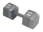 10LBS HEX DUMBBELL