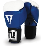 TITLE Masters USA Boxing Competition Gloves