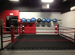 PRO Boxing Deluxe Floor Ring (16x16)