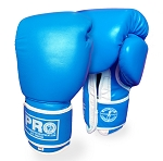 PROTECH BOXING GLOVES 14 OZ