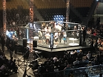 PRO USA® PROFESSIONAL MMA CAGE RENTAL