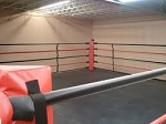 PRO Boxing MMA Ring Made in USA