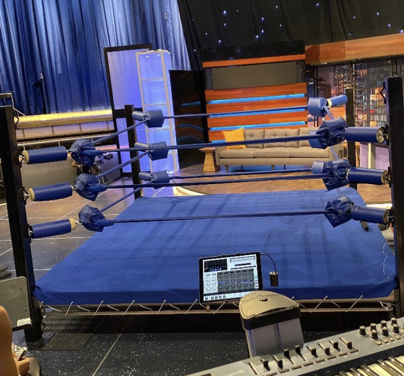 PRO Boxing Ring Custom Made Sales/Rentals