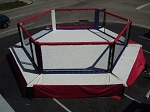 PROFESSIONAL MMA HEXAGON CAGE