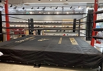 PRO Boxing Ring Custom Logo Handprinted Made in USA