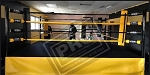 PRO Boxing Ring 14X14 COMPLETE Made In USA