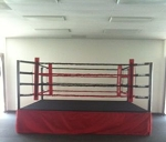 PRO BOXING RING 12X12 MADE IN USA