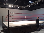 PRO BOXING EQUIPMENT RING (20'X20') MADE IN USA
