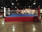 BOXING RING 22X22 COMPLETE WOOD INCLUDED MADE IN USA