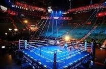 Official PRO Boxing Ring Fight Night Edition